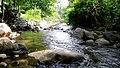 Anakkal Water Falls - panoramio (6).jpg