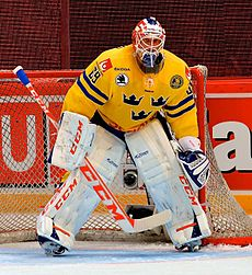 Anders Nilsson May 4, 2014 09.jpg