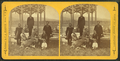 Andover Group at Summer House, from Robert N. Dennis collection of stereoscopic views.png