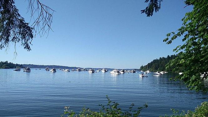 Andrews Bay Seattle WA USA.jpg