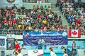 Ankara - BWF World Senior Badminton Championships - good crowds for the finals (11078231364).jpg