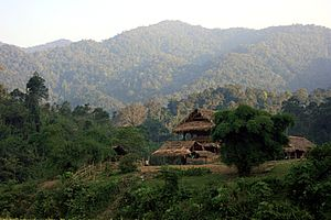 Annamite Range in Pu Mat National Park, Vietnam.