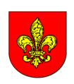 Antic escut d'Espluga de Serra.PNG