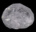 Apatite-(CaF)-Actinolite-280349.jpg