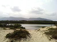 Araçá - Mar Pequeno.jpg
