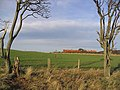 Arable field at Spylaw - geograph.org.uk - 312634.jpg