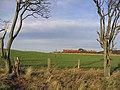 Arable field at Spylaw - geograph.org.uk - 312634.jpg