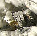 Arfvedsonite, Aegirine-185246.jpg