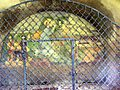 Armensuender Kapelle Unterzeiring Fresco A.Wal 20100327 (2v3).jpg