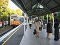 Artarmon railway station Sydney platform.jpg