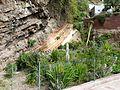 Artenara - Garten 1.jpg