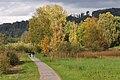 Auslikon - Pfäffikersee 2010-10-19 16-29-26.JPG