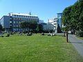 Austurvöllur - a sunny day.jpg