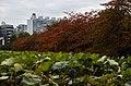 Autumn in Benten, Ueno - panoramio.jpg