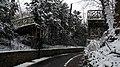 Avenue Tuck Stell sous la neige - panoramio.jpg