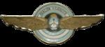 Aviación Ejercito Argentino Escudo.png