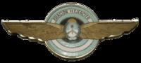 Aviacion Ejercito Argentino Escudo.png