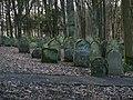 Bad Rappenau - Heinsheim - Jüdischer Friedhof - Blick über die östliche Mauer 1.jpg