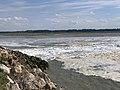 Baie Somme - Le Crotoy (FR80) - 2021-05-29 - 17.jpg