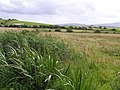 Ballymacaward Townland - geograph.org.uk - 1422773.jpg