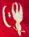 Banner of the Polish Sultan Cossacks Division during Crimean War.PNG