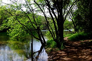 English: Barton Creek Greenbelt in Austin, Texas
