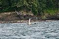 Bateau de pêche à voile à São Tomé.jpg