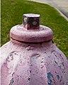 Bay Glen Pink Top (4506834690).jpg