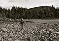 Beach walking (8121181898).jpg