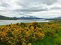 Bei Tongue an der nördlichen schottischen Küste - panoramio.jpg