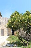 Beit Yad La-Banim, Oliphent house in Dalyat al-Karmel IMG 6149.JPG