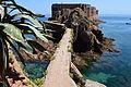 Bem-vindos á Ilha da Berlenga 03.JPG