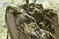Bemooster Steinbrocken im Kaiserbach-Tal bei St. Johann in Tirol.jpg