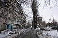 Berezniaky, Kiev, Ukraine - panoramio (8).jpg