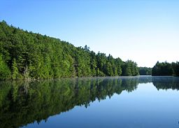Bigelow pond 9.6.2005.jpg