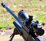Blaser R93 Tactical (6883632150).jpg
