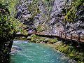 Bled Vintgar-Klamm 49.JPG