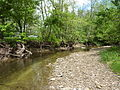 Bloomington - Jackson Creek - P1080475.JPG