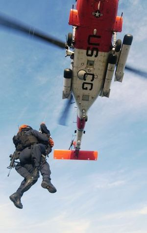 Sea Marshal - Two USCG Sea Marshals boarding a vessel by means of vertical delivery from a U.S. Coast Guard HH-60 Jayhawk helicopter