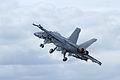 Boeing F-18 Super Hornet 2 (4827285928).jpg