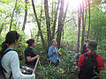 Bog turtle survey team discussing the turtles (8426057485).jpg