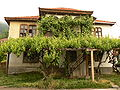 Bosilegrad-house-03.jpg