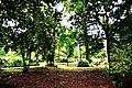 Botanic garden limbe5.jpg