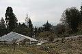 Botanischen Garten der Universität Zürich - panoramio (7).jpg