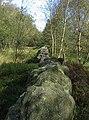 Boundary of Farley Moor and Matlock Moor - geograph.org.uk - 254869.jpg