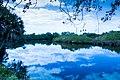 Braden River 1 (32630681915).jpg