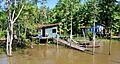 Brazil Belém Rio Guamá island house 2009.jpg