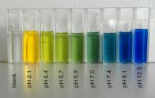 色 btb 溶液