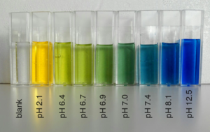 Bromothymol blue - Different colors of bromothymol blue at marked pH conditions.