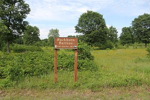 Buckhorn State Park - Image: Buckhorn Barrens State Natural Area at Buckhorn State Park